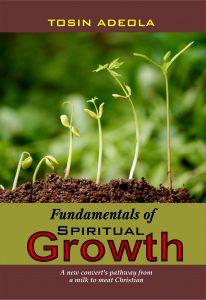 Book Cover: Fundamentals of Spiritual Growth